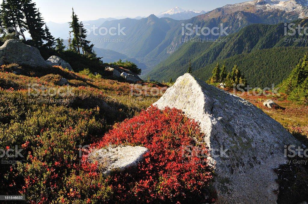 fall color at hidden lake trail royalty-free stock photo