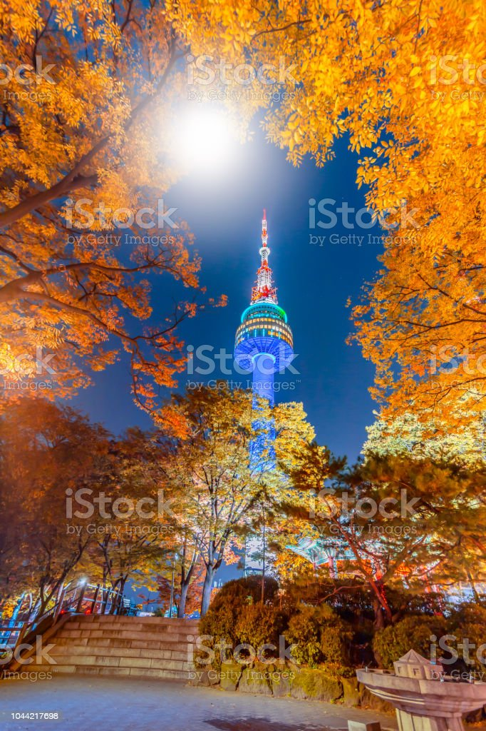a87bca031e4e6 Fall color change in Seoul and N seoul tower in autumn at night, Seoul city