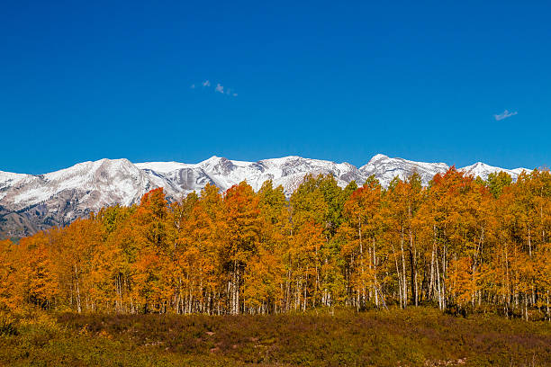 Fall Color in Crested Butte Colorado stock photo