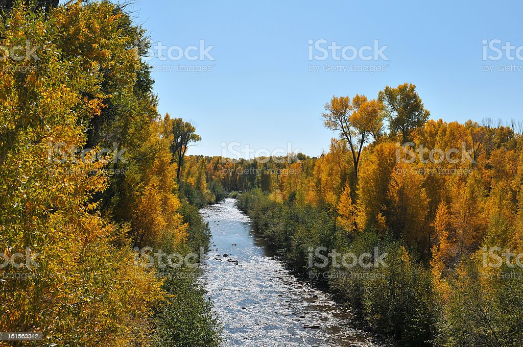 Fall color in New Mexico stock photo