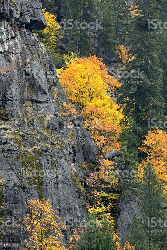 Fall Color of Tumwater Canyon stock photo