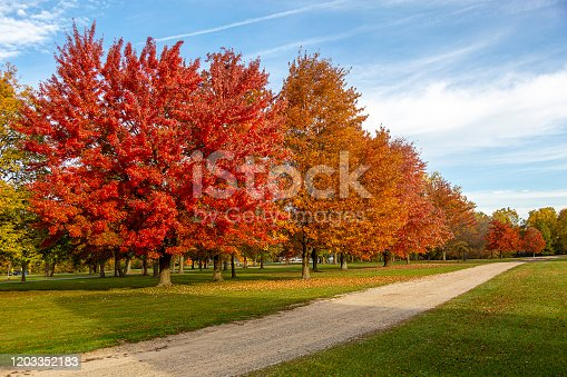 This fall color park view was absolutely gorgious
