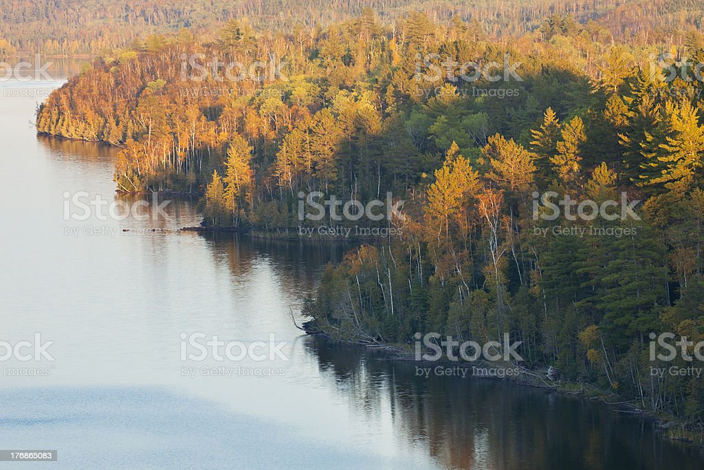 Fall color trees on Boundary Waters lake stock photo