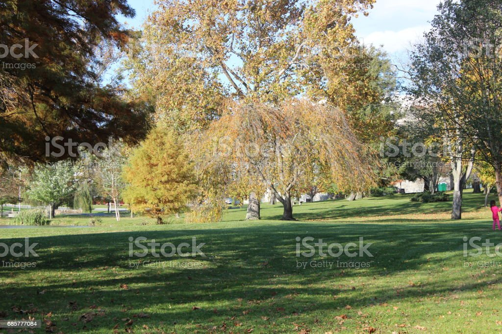 Fall Colors 2 royalty-free stock photo