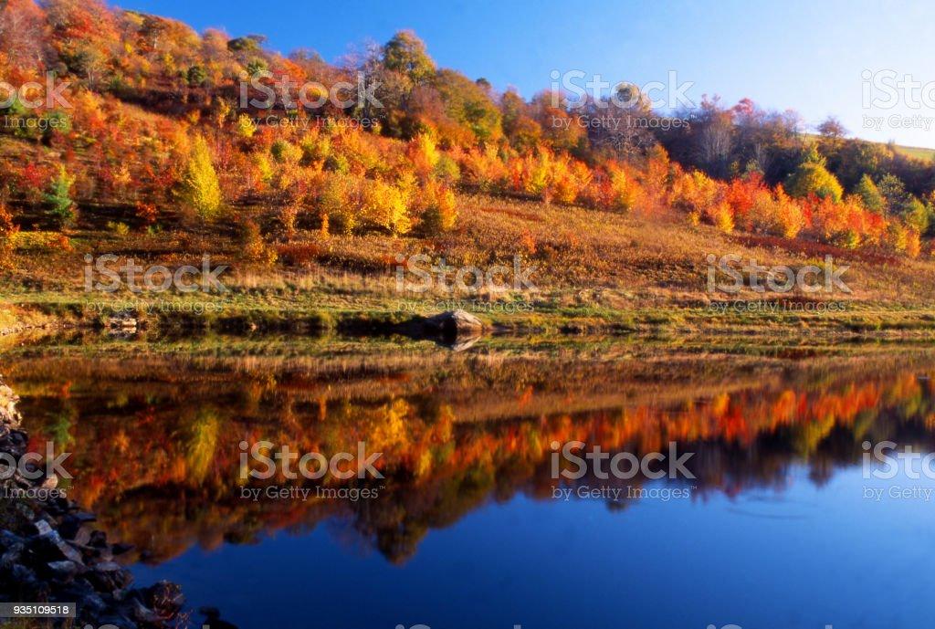 Fall colors along a clear blue lake. stock photo