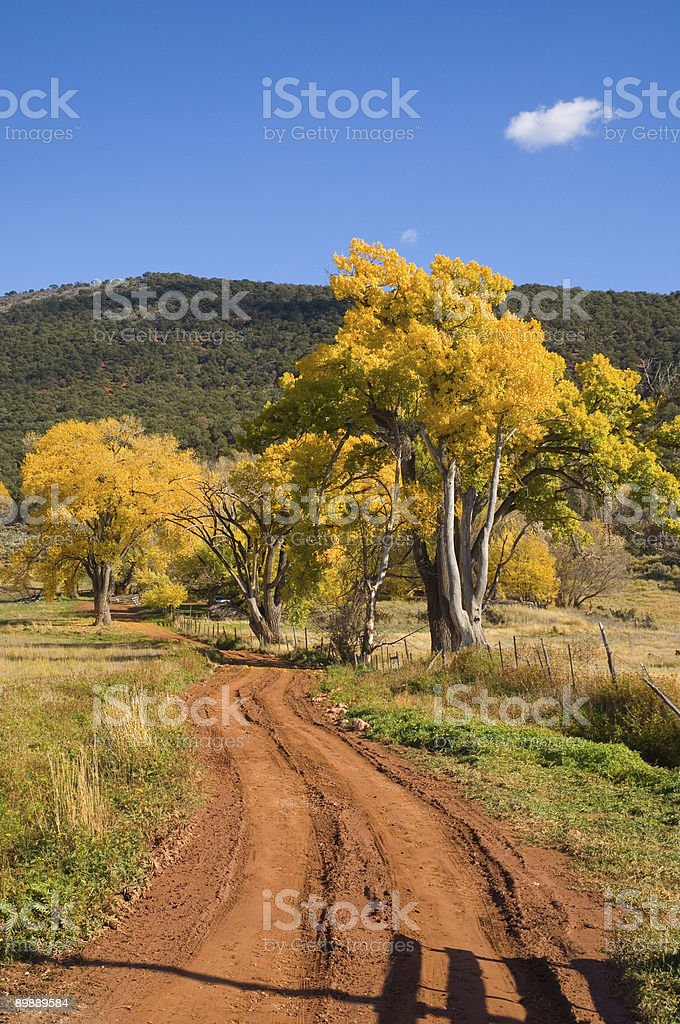 Fall Colors and Dirt Road Colorado royalty-free stock photo