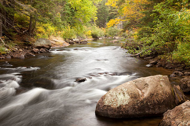 Fall Colors and River stock photo