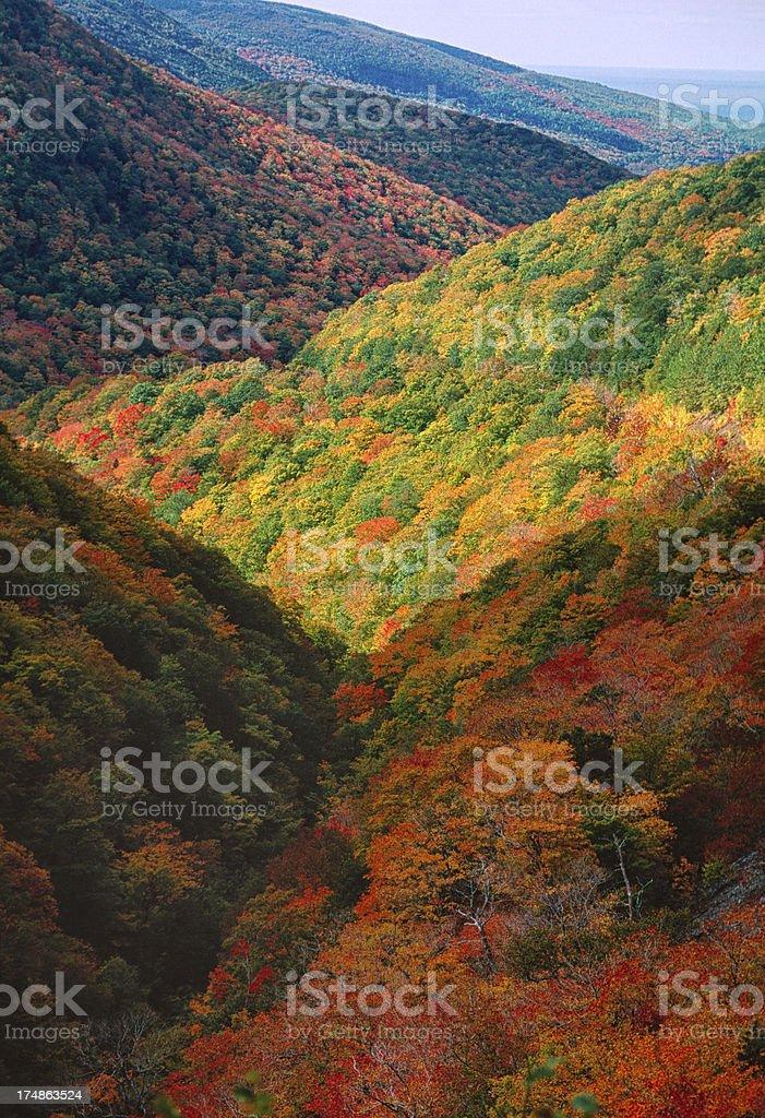 Fall Colors Cape Breton Island Nova SCotia royalty-free stock photo