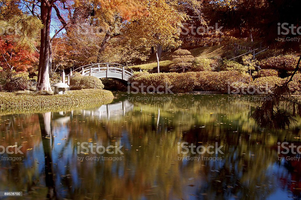 Fall Colors in a Japanese Garden royalty-free stock photo