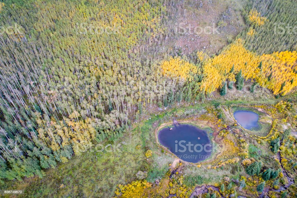 fall colors in a mountain valley in Colorado stock photo