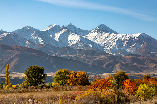 istock Fall colors in Bishkek, Kyrgyzstan with the Tien Shan Mountains in the background, in the autumn. 1085616308