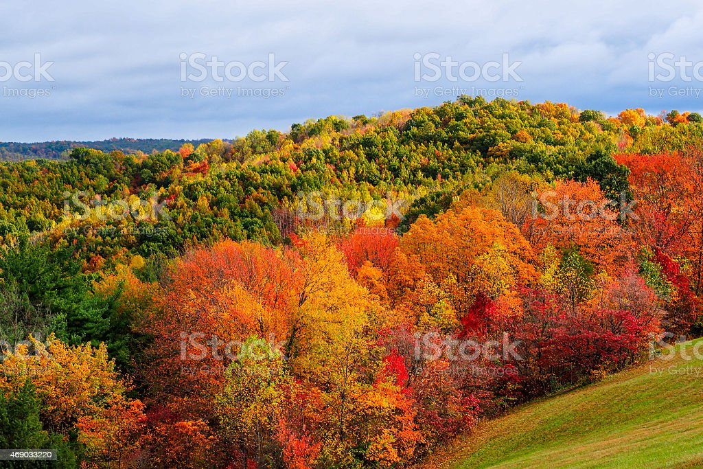 Fall colors in Hocking Hills Ohio stock photo