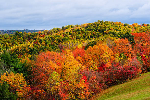 fall colors in hocking hills ohio - hill stock pictures, royalty-free photos & images