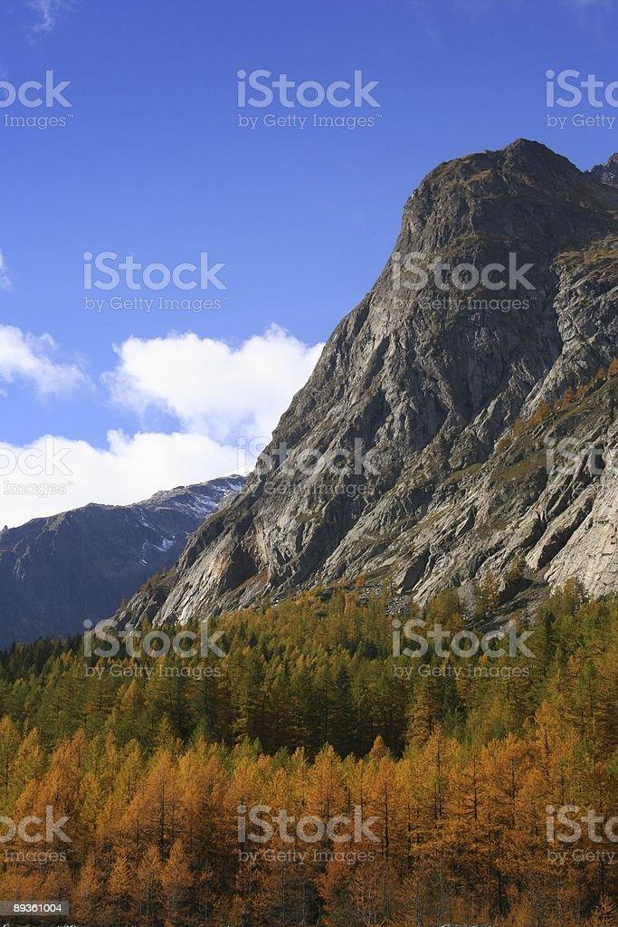 Fall colors in Italian Alps royalty free stockfoto