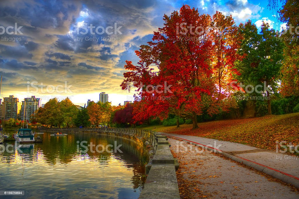 Fall Colors in the Park stock photo
