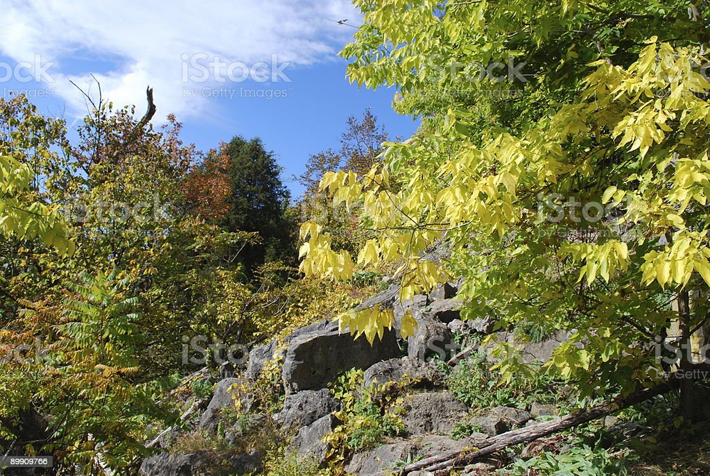Fall Colors. Niagara Escarpment. royalty-free stock photo
