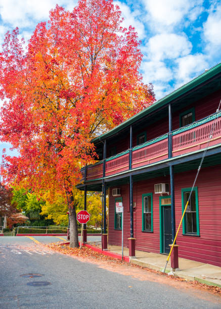 Fall colors on a street in Sutter Creek California stock photo