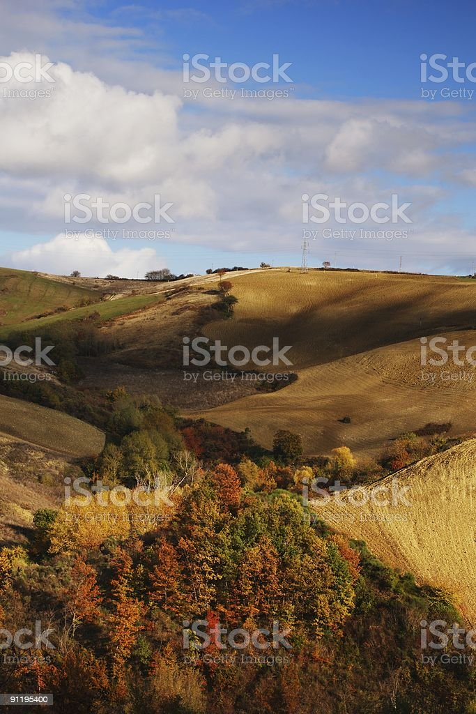 Fall colors on hillside royalty-free stock photo