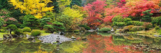 herbstfarben - japanischer garten stock-fotos und bilder