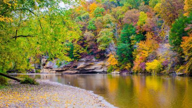 Fall colors reflect on a creek stock photo