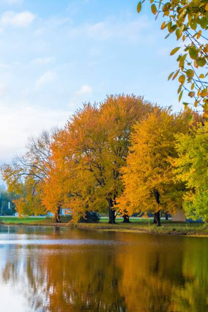 Fall colors reflect on a pond stock photo