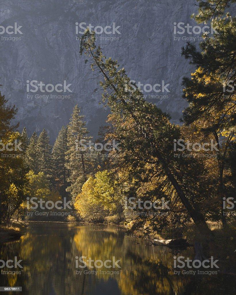 fall colors reflection at yosemite. royalty-free stock photo
