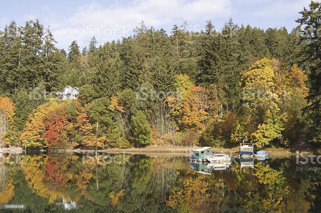 Fall colours and reflections of houseboats with trees stock photo