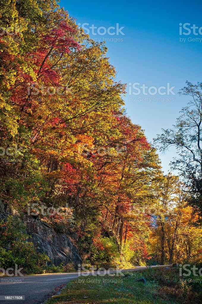 Fall colours, Blue Ridge Parkway, North Carolina, USA royalty-free stock photo
