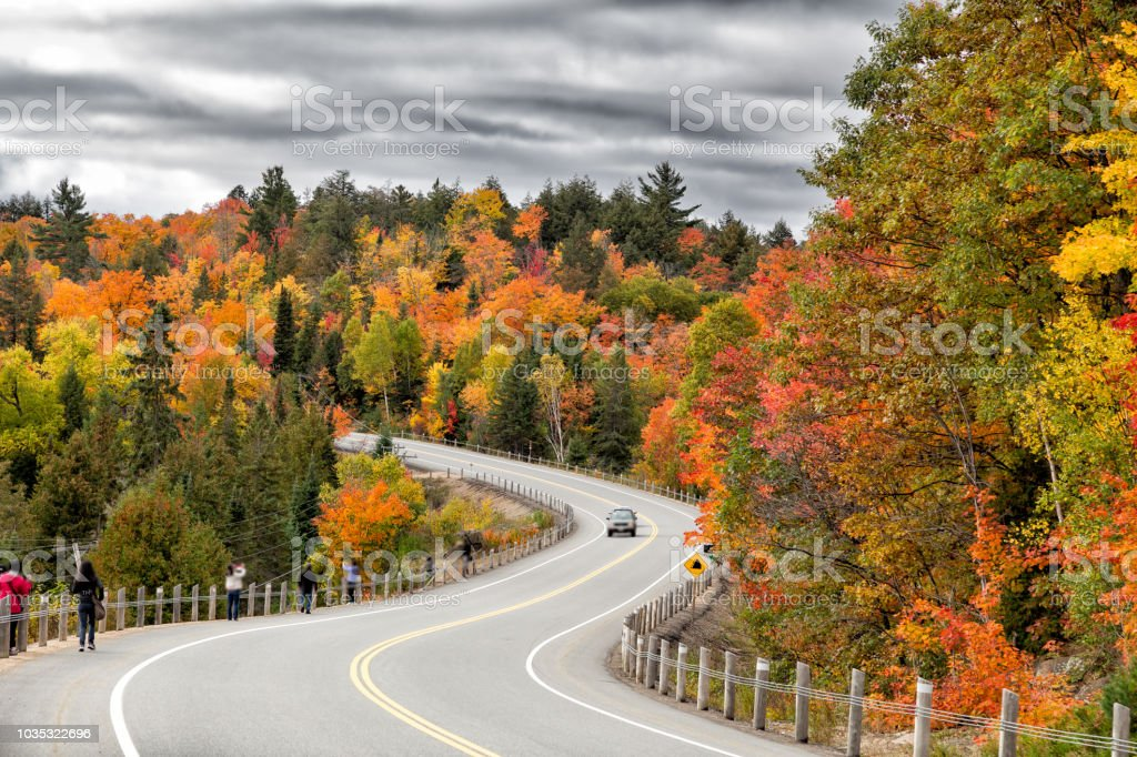 Fall colours in Algonquin Park stock photo
