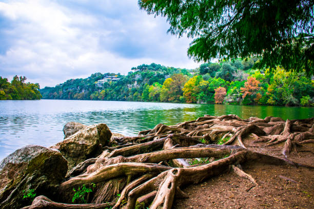 Fall comes to Austin Texas on the tip of red bud Isle town lake Fall comes to Austin Texas colorado river stock pictures, royalty-free photos & images