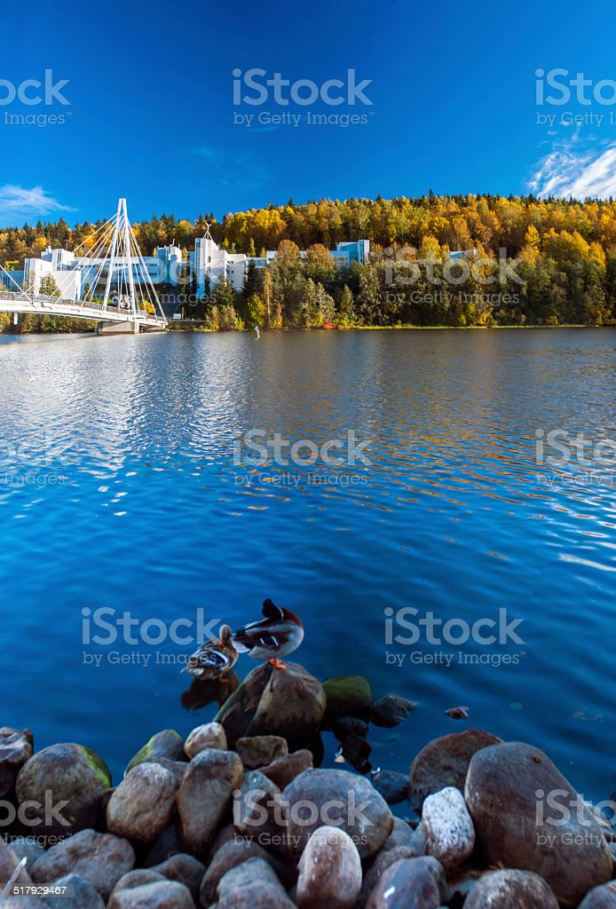 Fall comes to university royalty-free stock photo