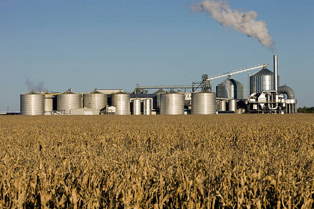 Fall Cornfield with Ethanol Biorefinery in the Background  biodiesel stock pictures, royalty-free photos & images