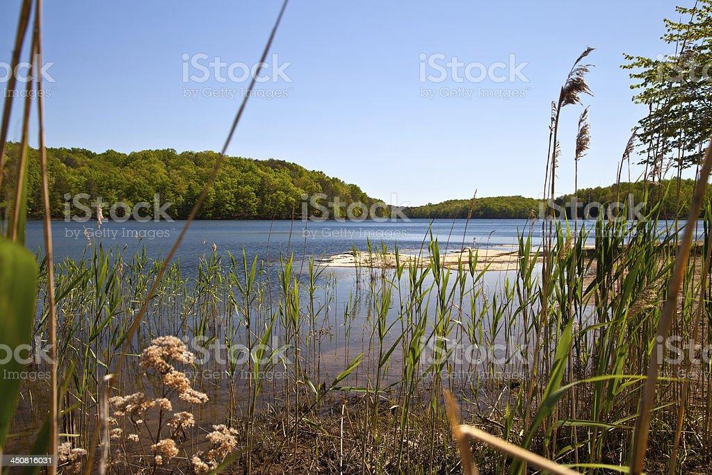 Fall Creek Falls Lake stock photo
