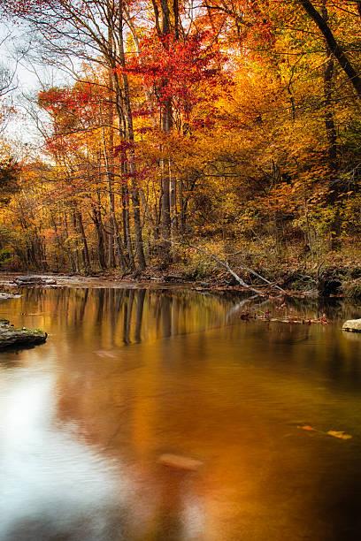 Fall Creek stock photo