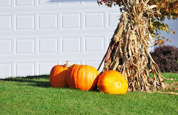 Herbst-Anzeige – Foto