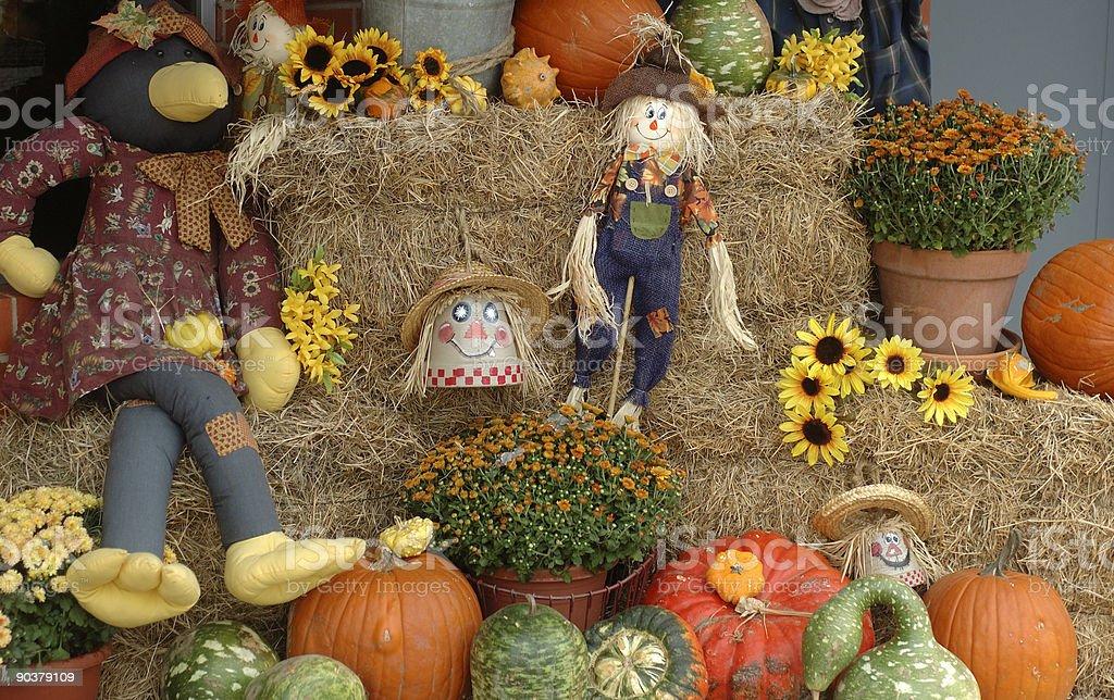 Exibição de outono - foto de acervo
