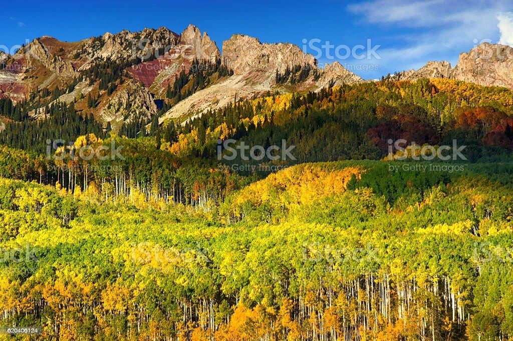 Fall Evening Along Kebler Pass stock photo