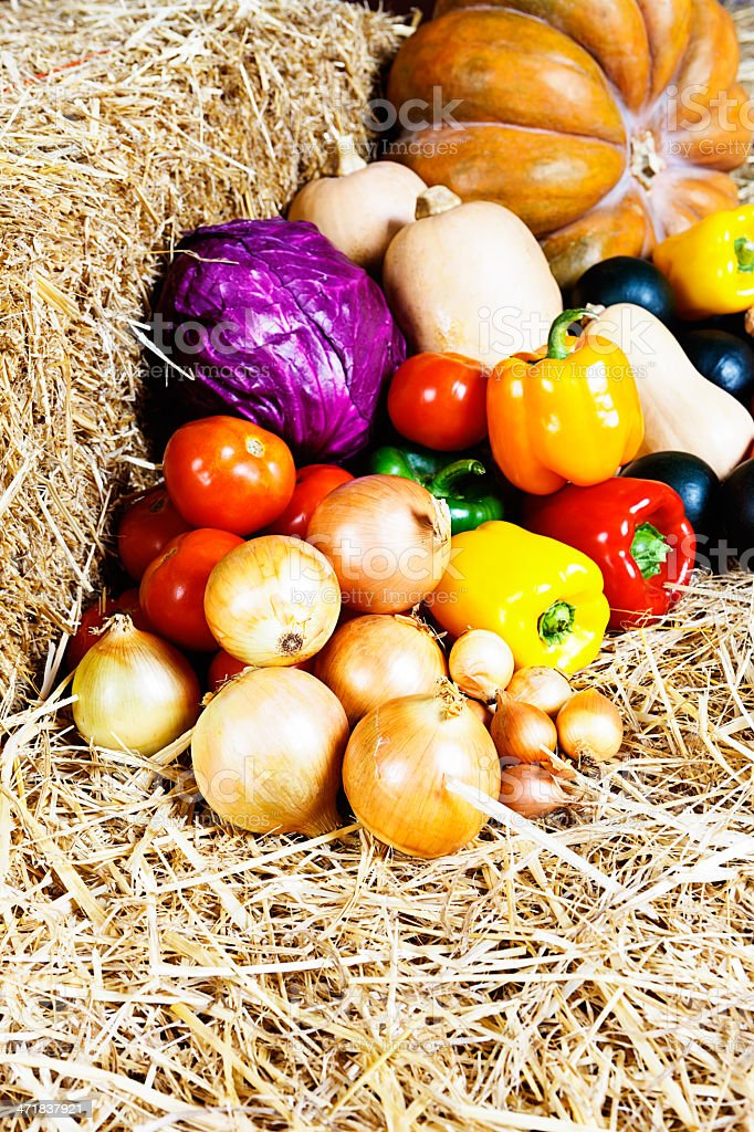 Fall festival: colorful, healthy vegetables on straw royalty-free stock photo
