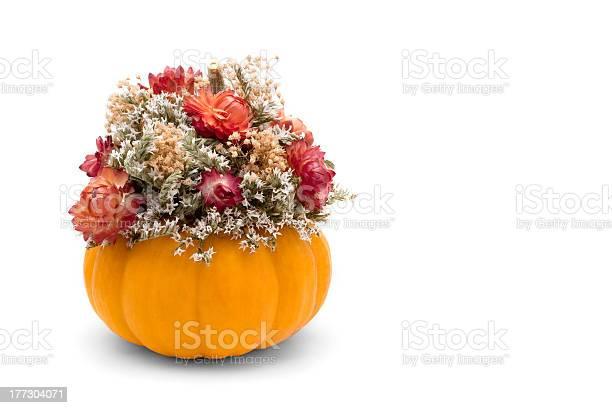 Fall floral picture id177304071?b=1&k=6&m=177304071&s=612x612&h=ujdshcr0rdyyqln ajj2t2pwtrhqtdk rwdnrztxbxw=
