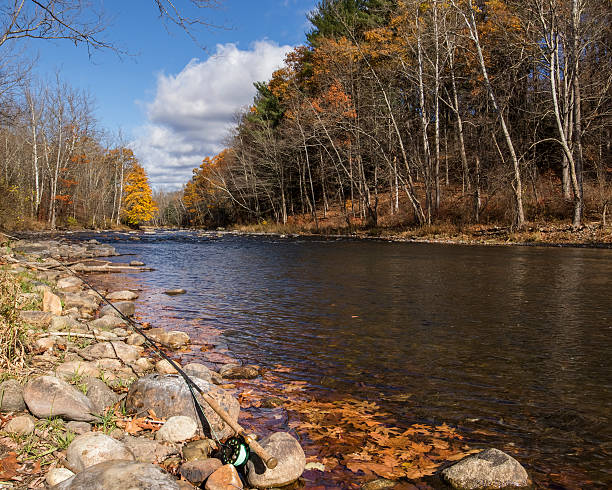 Fall fly fishing on the Farmington river stock photo