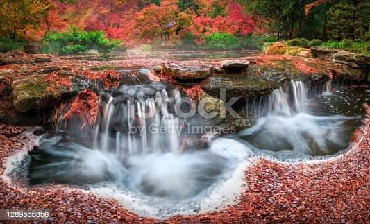 Stunning fall colors in the Fort Worth Botanic Garden featuring a cascading stream in the foreground