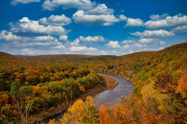 feuillage d'automne et fleuve de delaware - rivière delaware photos et images de collection
