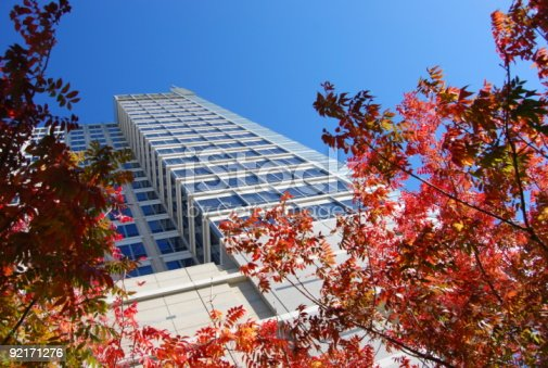 istock Fall Foliage and looking up at Building 92171276