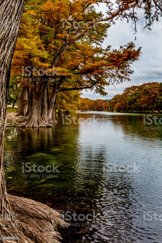 Fall Foliage in Garner State Park, Texas stock photo