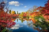 秋の紅葉の京都、日本