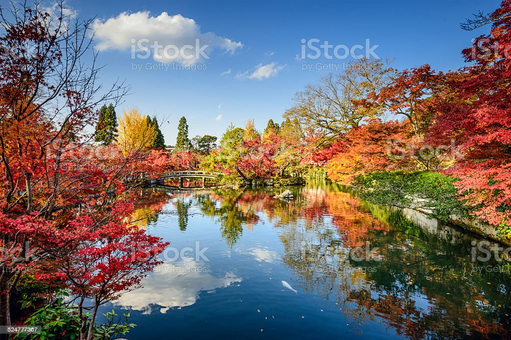 Fall Foliage in Kyoto, Japan stock photo