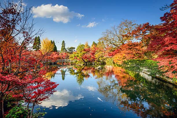 秋の紅葉の京都、日本 ストックフォト