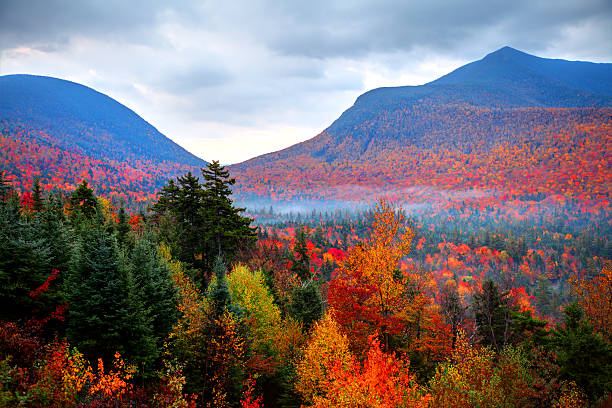 fall foliage in the white mountains of new hampshire - new hampshire stockfoto's en -beelden