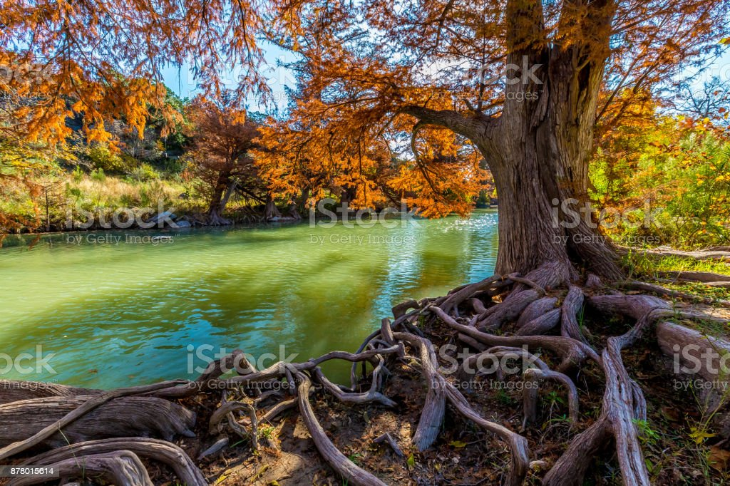 Herbstfarben am Fluss Guadalupe im Guadalupe State Park, Texas – Foto