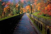 Seattle arboretum bridge with fall foliage.